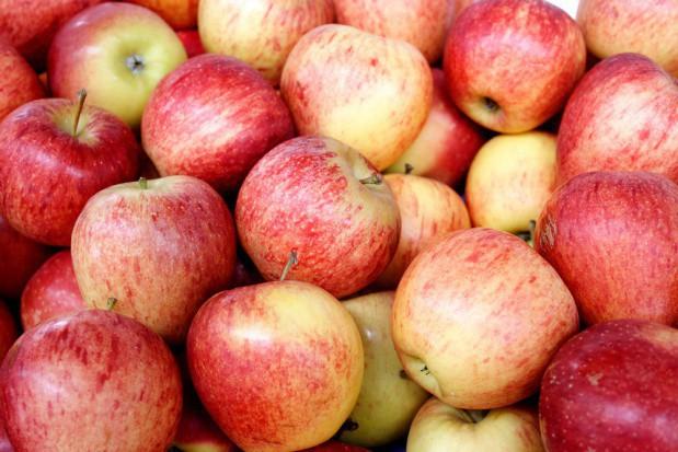 TRSK: 1 mln ton zapasów jabłek w Polsce w grudniu