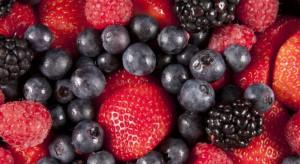 Zbiory owoców jagodowych o 15 proc. mniejsze niż rok temu