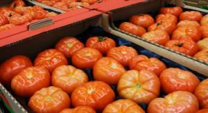 KE: Mniej restrykcyjne kontrole fitosanitarne pomidorów z Maroka