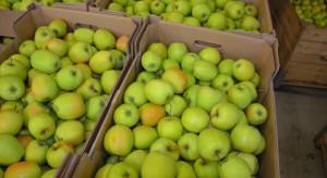 WAPA: Największe zapasy jabłek w grudniu 2017 r. znajdowały się w Polsce