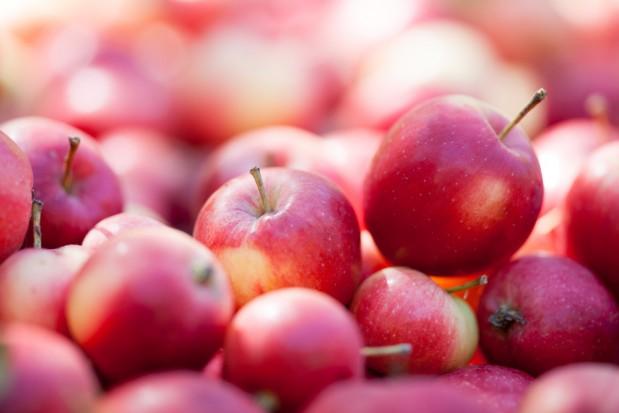 UO: Propozycje działań, które pozwolą produkować owoce bez pozostałości