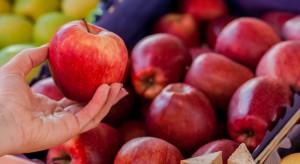 Czesi kolejny raz wykryli pestycydy w jabłkach importowanych z Polski