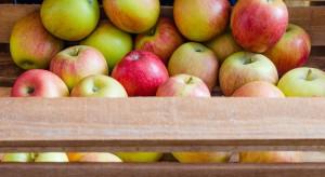 PIORiN: Bezpieczeństwo żywności i wspieranie eksportu priorytetami w 2018 r.