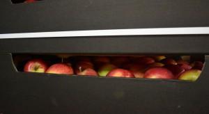 Rosselkhoznadzor oskarża dziewięć białoruskich firm o reeksport owoców i warzyw