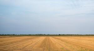 KOWR wydzierżawił rolnikom ponad 50 tys. ha gruntów w ub.r.