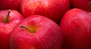 Włosi musieli ograniczyć wysyłki jabłek do Indii