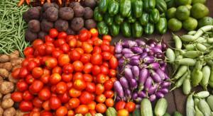 Łódzkie: Producenci ziemniaków i warzyw apelują do rządu o  pomoc