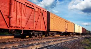 Chiny rozpoczęły kolejowe dostawy owoców i warzyw do Rosji i Białorusi