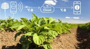 Bosch Deepfield Connect – aplikacja do monitorowania produkcji owoców i warzyw