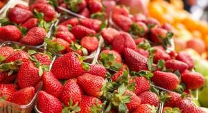 Wielka Brytania: Pierwsze truskawki już na półkach w supermarketach