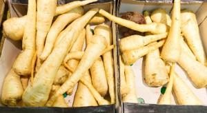 Polscy producenci wstrzymują sprzedaż pietruszki korzeniowej licząc na wzrost cen