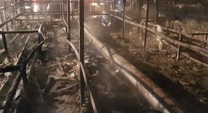 Sandomierz: Płonęła szklarnia, w której produkowano warzywa
