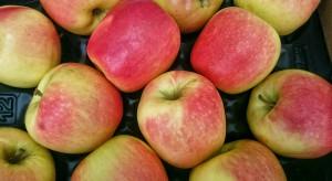 Jabłka na Ukrainie stają się coraz droższe