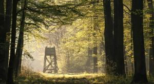 KRiR postuluje o wprowadzenie poprawek do nowelizowanego Prawa łowieckiego