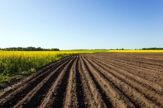Radcy prawni, którzy mieli oszukać rolnika – prawomocnie uniewinnieni