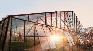 Rosja: w Stawropolu otwarto 10-hektarowy kompleks szklarniowy