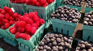 Embargo zapoczątkowało nową erę dla ukraińskiego eksportu owoców