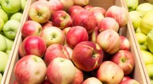 Wojna celna USA-Chiny szansą dla polskich jabłek?
