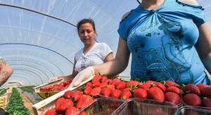 W 2017 r. dwukrotnie wzrosła liczba wydanych zezwoleń na prace dla cudzoziemców w Polsce