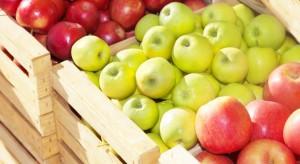 Na celnej wojnie mogą zyskać dostawcy jabłek z Australii, Chile i Europy