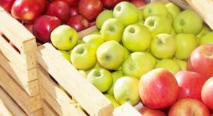 Cena skupu jabłek deserowych na początku miesiąca była wyższa o 77%