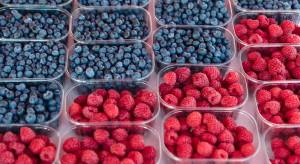 Wentylacja boczna w opakowaniach wydłuża świeżość owoców i warzyw