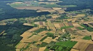 Polskie gospodarstwa w większości są małe i rozdrobnione