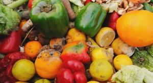 Sklepowe śmietniki pełne są owoców i warzyw