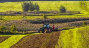 Ziemia rolna w Polsce dalej drożeje