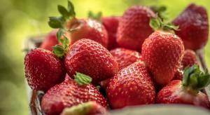 Cypr: Pola truskawek objęte kwarantanną z powodu pestycydów w owocach
