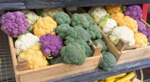 Dieta bogata w warzywa poprawia stan tętnic u starszych kobiet