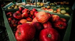 Rosselkhoznadzor skontroluje przechowalnie jabłek w Mołdawii