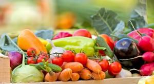 Parlament Europejski przyjął nowe, surowsze zasady produkcji żywności ekologicznej