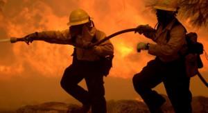 Pożar w obiektach grupy La-Sad w Borzęcinie