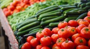 Rosja: zbiory warzyw szklarniowych wyższe niż poprzednio