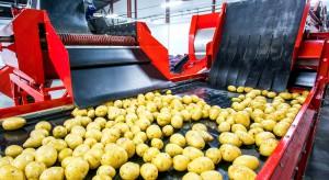 Branża przetwórstwa owocowo-warzywnego w 2017 r. - koszty rosły szybciej niż przychody