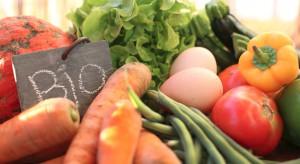 Polski Koszyk: Owoce i warzywa najchętniej wybieranymi produktami BIO