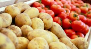 Pomidory i ziemniaki najczęściej importowanymi warzywami w UE