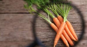 IJHARS przedstawiła wyniki kontroli jakości ziemniaków i warzyw