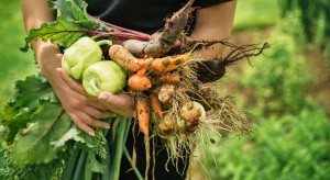 Gospodarstwa ekologiczne nadal sprzedają zbyt mało produktów