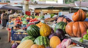 Wysokie zbiory owoców obniżą ceny i spowodują spiętrzenie dostaw