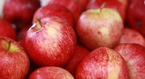 Chiny: Sprzedaż jabłek może wzrosnąć z powodu chłodu