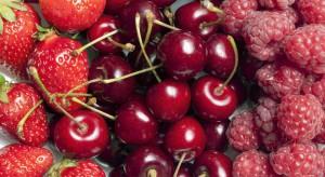 Giełda Goławin: Plantatorzy obawiają się niskich cen owoców