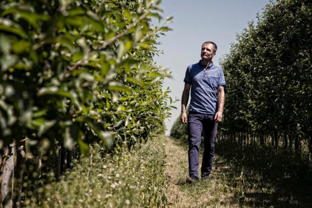 Prezes grupy Galster o największych zagrożeniach w ochronie sadów w tym sezonie (wideo)