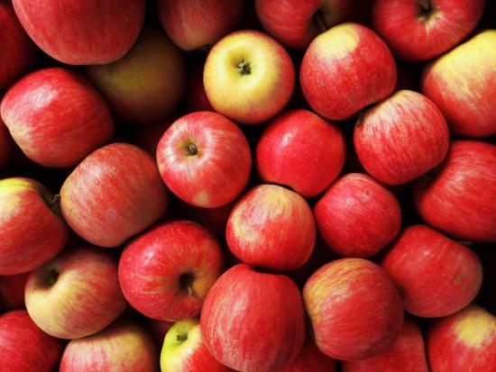Logistyka jeden z głównych problemów w produkcji jabłek w Uzbekistanie