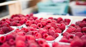 Samorząd rolniczy wnioskuje o kontrole owoców z zagranicy