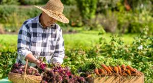 Carrefour stawia na współpracę z polskimi rolnikami