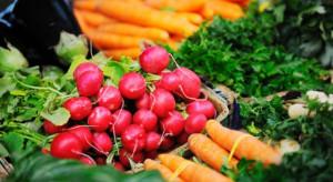 Wzrasta popyt na na produkty ekologiczne, rynek nie nadąża z produkcją