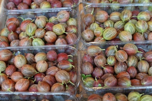 Skup agrestu: Ceny owoców w dalszym ciągu rekordowo niskie