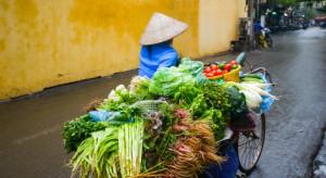 KOWR: Polskie jabłka i inne owoce i warzywa mają szanse na sukces w Wietnamie